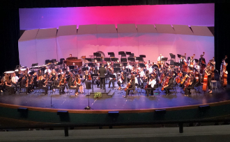 image of orchestra concert