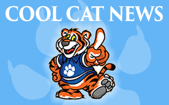 Cool Cat Newsletter