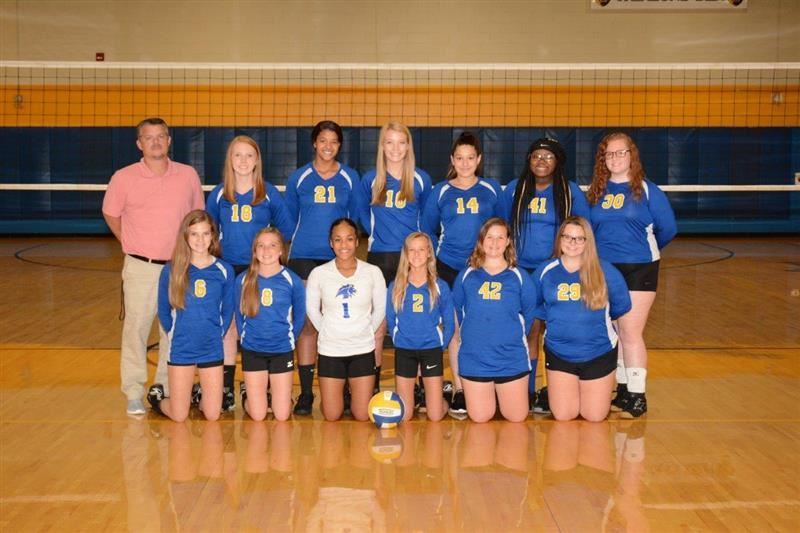 image of JV volleyball team
